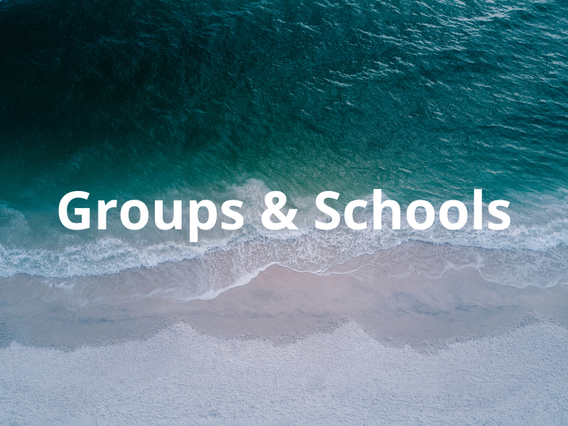 groups schools